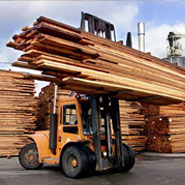 building_softwood